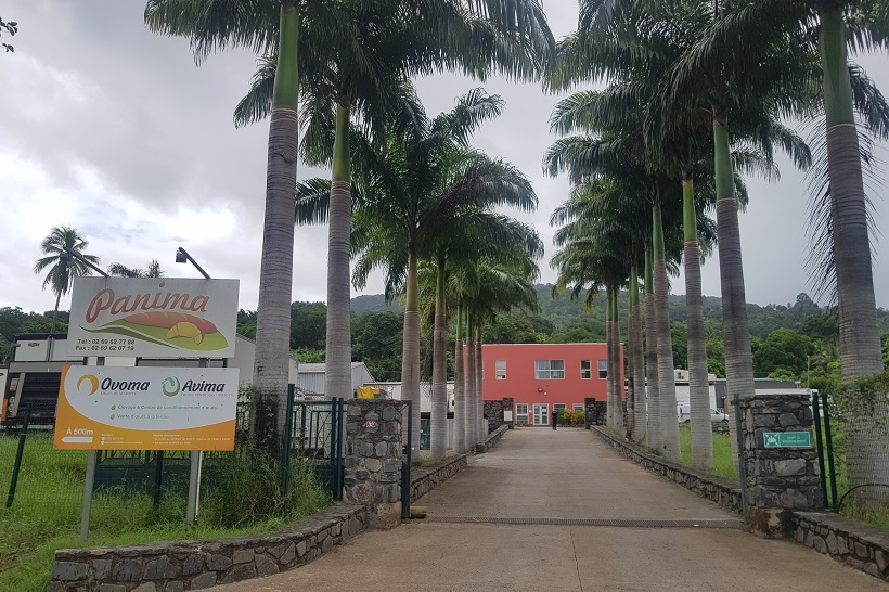 Attaquée de toutes parts à Mayotte, Panima tente de riposter