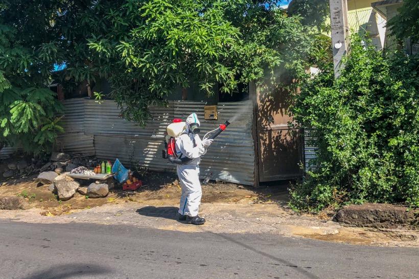 Vers la fin de l'épidémie de dengue à Mayotte ?