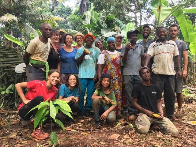 Café et cacao : les trésors cachés de Mayotte