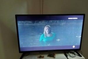TV Schneider 81 cm