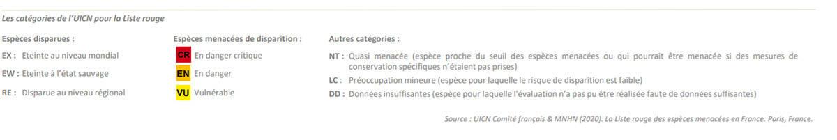 liste-rouge-especes-menacees-situation-inquietante-mayotte-3