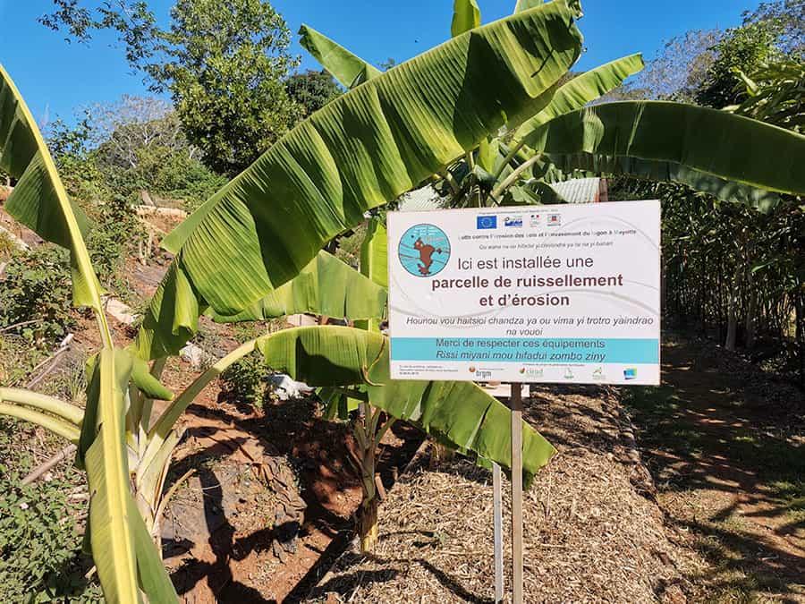 ateliers-grandeurs-natures-sensibiliser-erosion-lycee-coconi