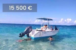 A vendre: Kingfisher Conero, moteur 100CV (840h), 7 places